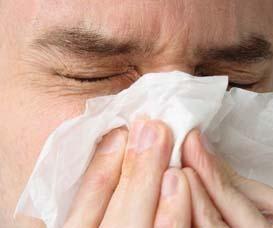 Rinite allergica o raffreddore